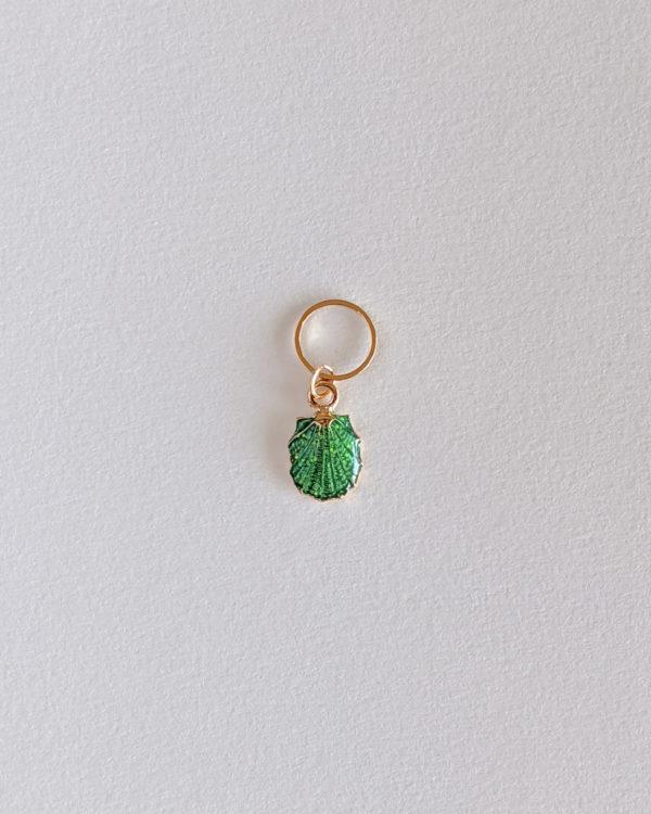 Coquillage coque, vert clair